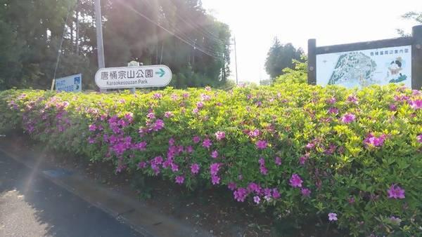 芳賀 唐桶宗山公園