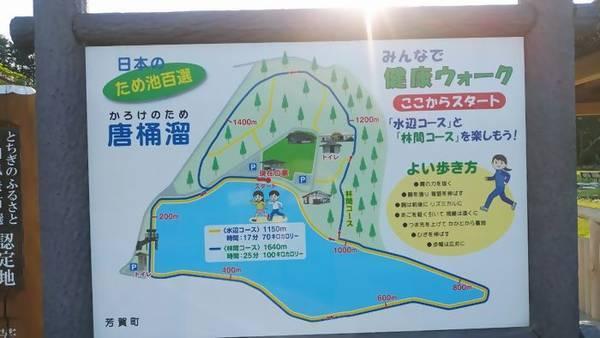 芳賀 唐桶宗山公園 ウォーキング