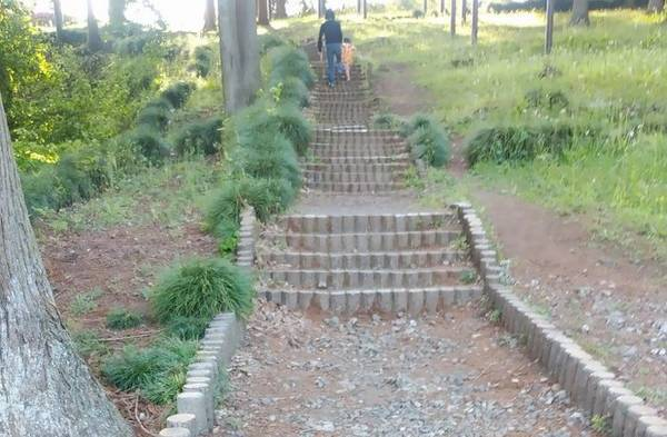 芳賀 唐桶宗山公園 階段