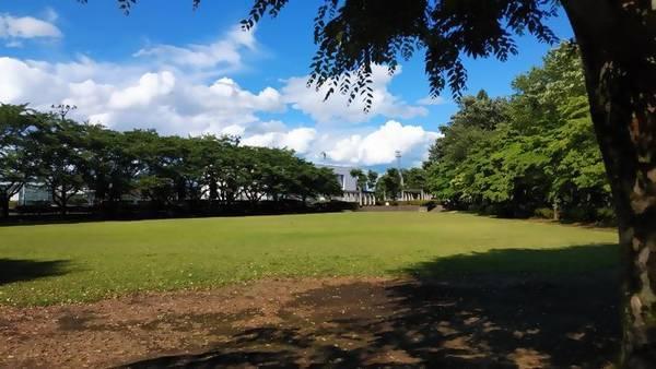 下野市 大松山運動公園 広場