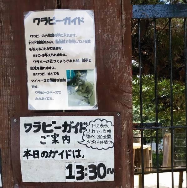 宇都宮動物園イベント案内