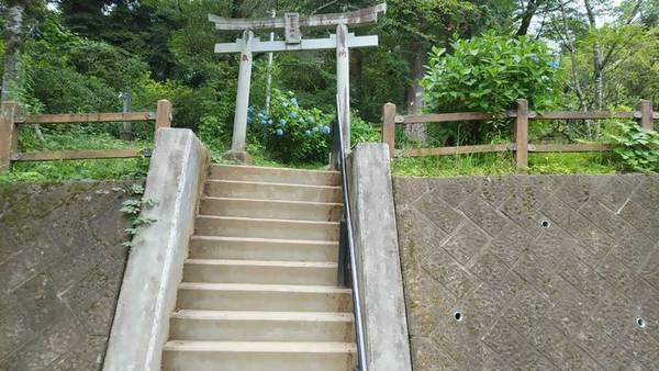 鹿沼市千住山公園 階段