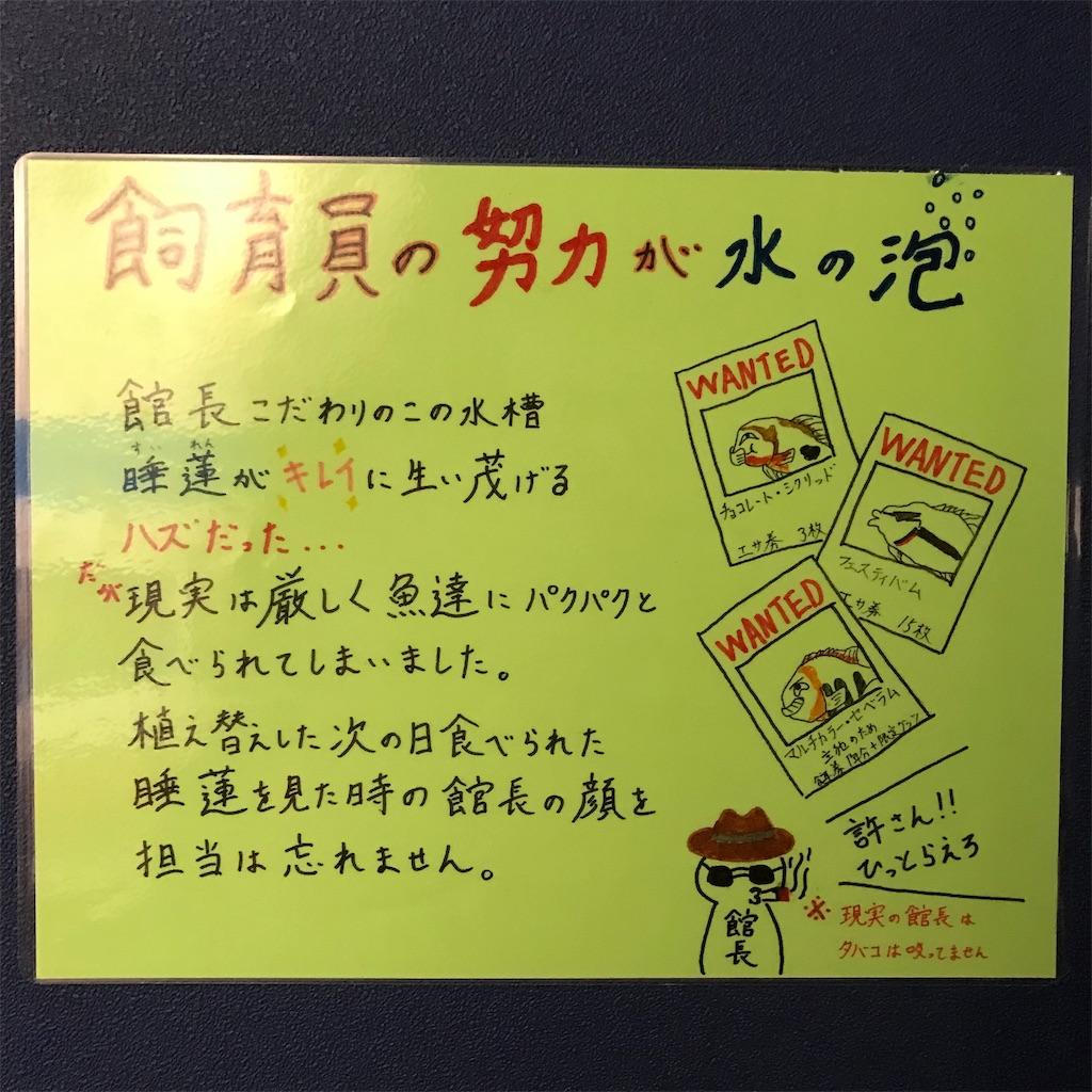f:id:chokichokihair:20181109163706j:image