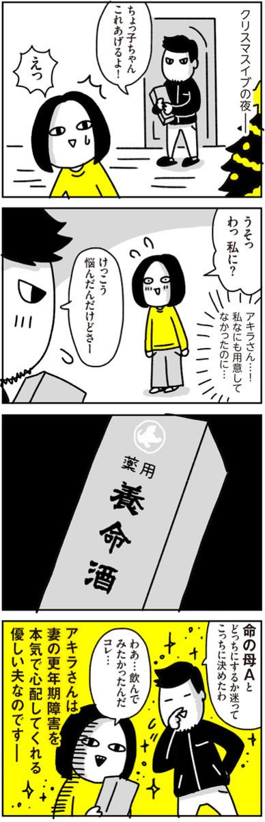 f:id:chokko_san:20170103234533j:plain