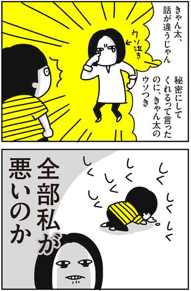 f:id:chokko_san:20170508235800j:plain