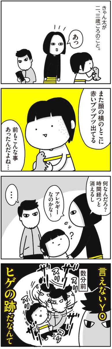 f:id:chokko_san:20170517135126j:plain