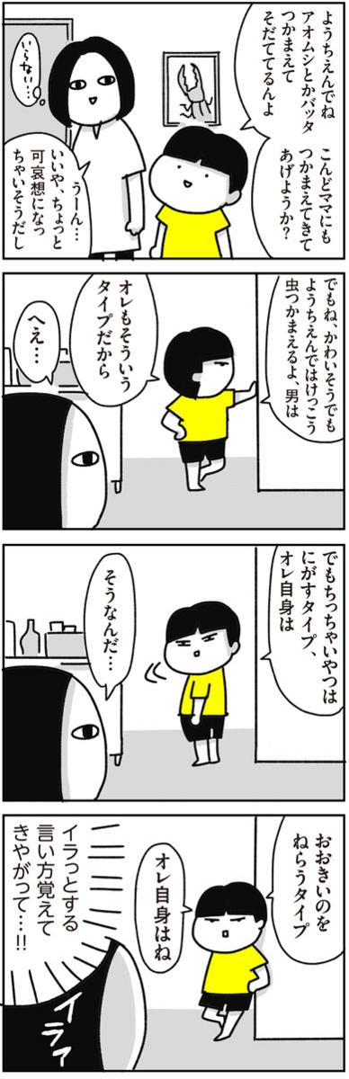 f:id:chokko_san:20170629235841j:plain