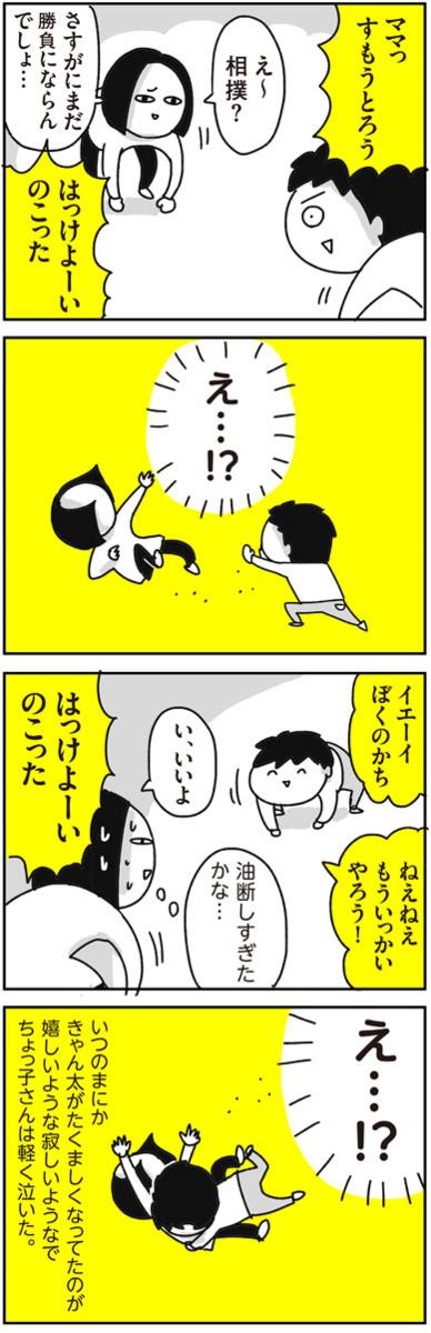 f:id:chokko_san:20171215224603j:plain