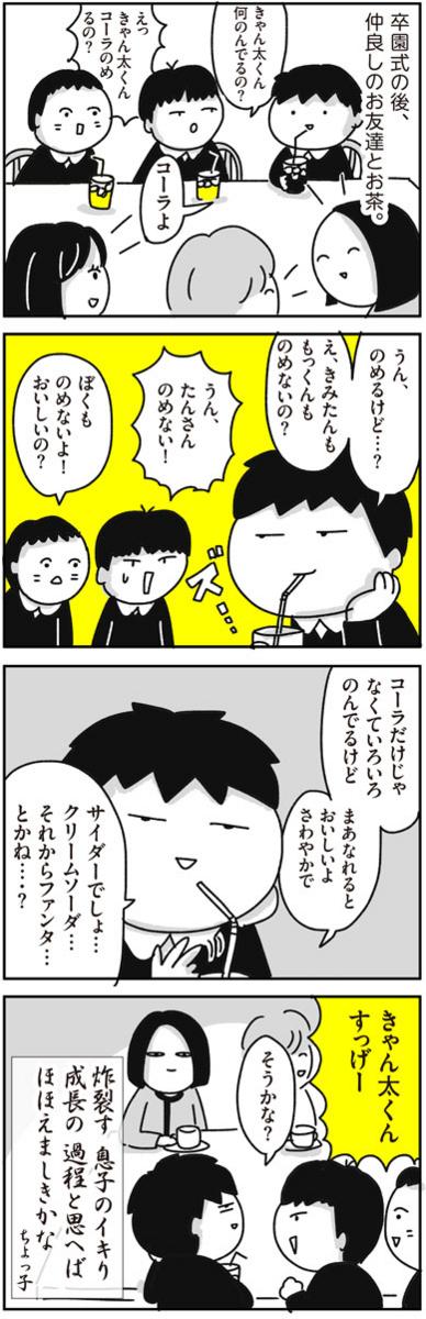 f:id:chokko_san:20180402111656j:plain