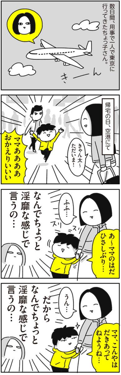 f:id:chokko_san:20180414234055j:plain