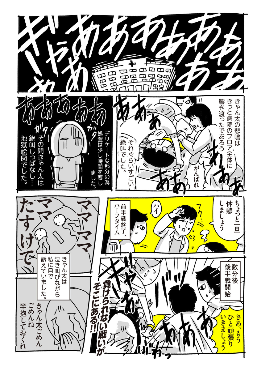 f:id:chokko_san:20181015182418j:plain