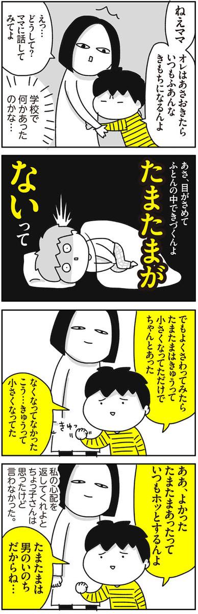 f:id:chokko_san:20190128154302j:plain