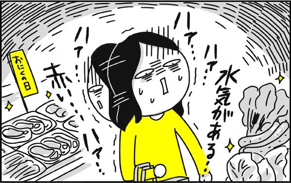 f:id:chokko_san:20190425141724j:plain