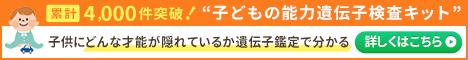 f:id:chokko_san:20200205102507j:plain