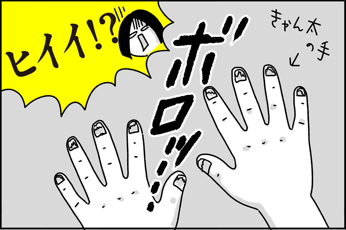 f:id:chokko_san:20200403101811j:plain