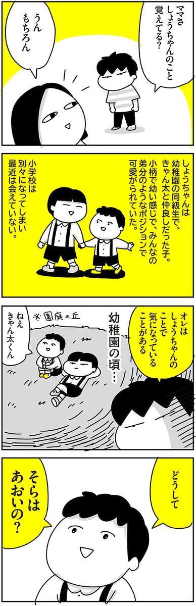 f:id:chokko_san:20210528173525j:plain