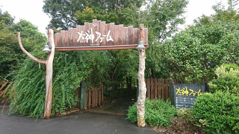 f:id:chokoratsuki:20200225193228j:plain