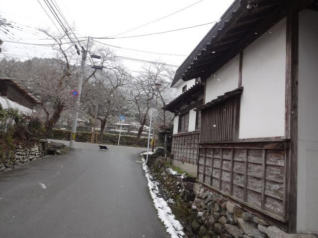 f:id:chokoratsuki:20200227091138j:plain
