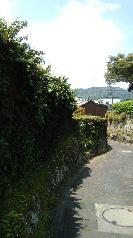 f:id:chokoratsuki:20200227200024j:plain