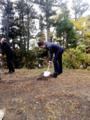 f:id:chokoreeto:20121113024721j:image:medium