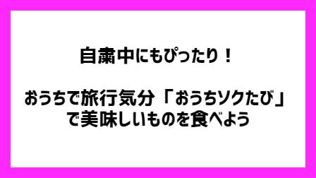 f:id:chokotimtam:20200610152737p:plain