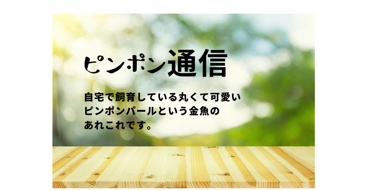 f:id:chokukotan:20210528002758p:plain