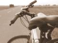 [自転車]さざなみ街道近くの直線道路
