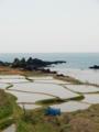 [棚田]棚田と海