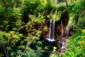 [滝]プリトヴィッツェ湖群国立公園