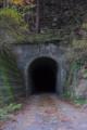 [隧道]深谷隧道 旧和歌山県道221号市鹿野鮎川線