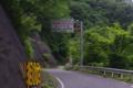 [道]国道157号線 温見峠 入口