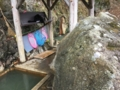 [温泉]塩原福渡温泉 岩の湯