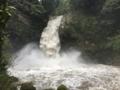 [滝][百名瀑]浄蓮の滝