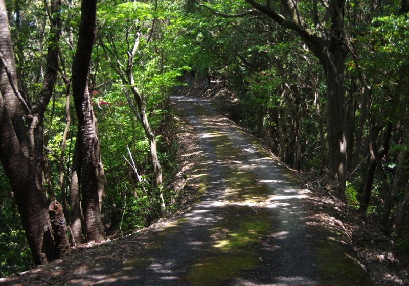 和歌山県道235号南平野下里停車場線