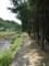山空海温泉