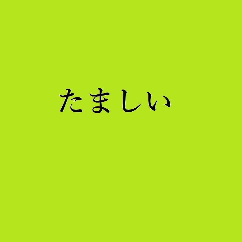 f:id:choro0164:20190503073500j:plain