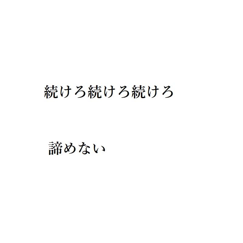 f:id:choro0164:20190513103955j:plain