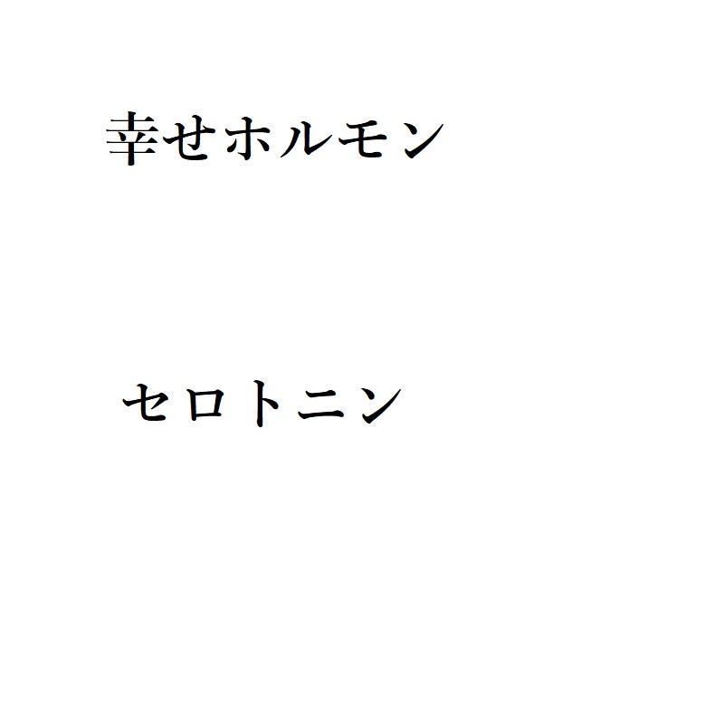 f:id:choro0164:20190531094554j:plain