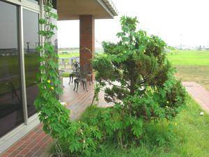 f:id:choshimarina:20060830102215j:image