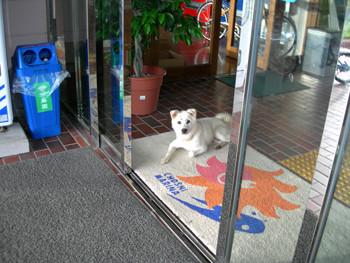 f:id:choshimarina:20060915155708j:image