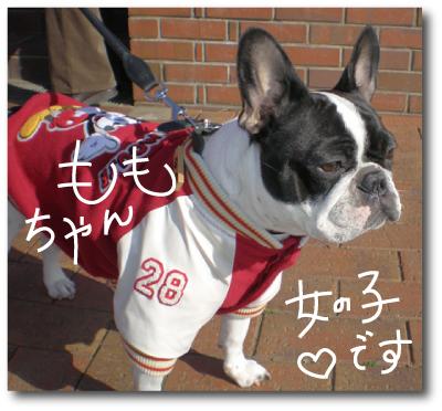 f:id:choshimarina:20070108134433j:image