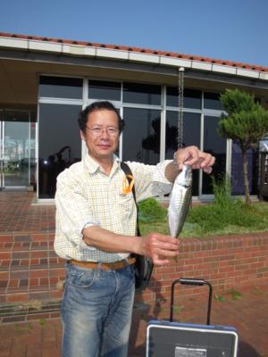 f:id:choshimarina:20100502152503j:image