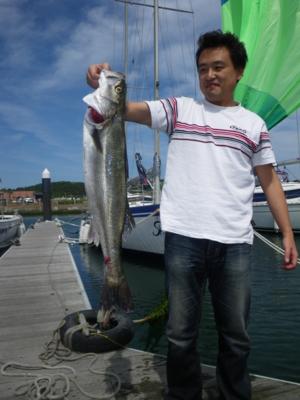 f:id:choshimarina:20100606135149j:image