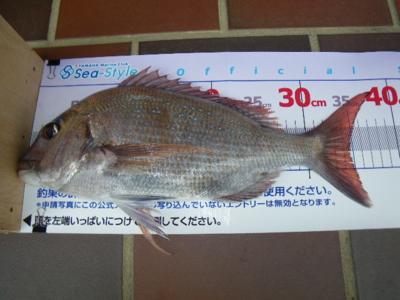 f:id:choshimarina:20150419120646j:image