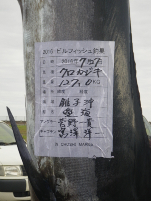 f:id:choshimarina:20160727164313j:image