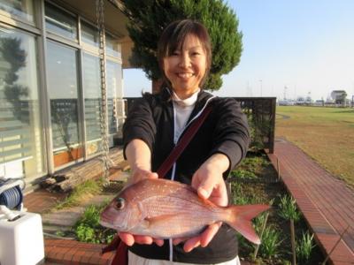 f:id:choshimarina:20161113152744j:image