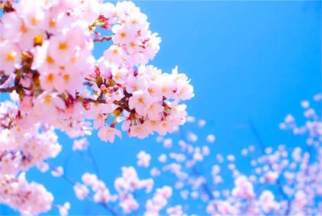 f:id:choudoiisaizu:20170312132911j:image