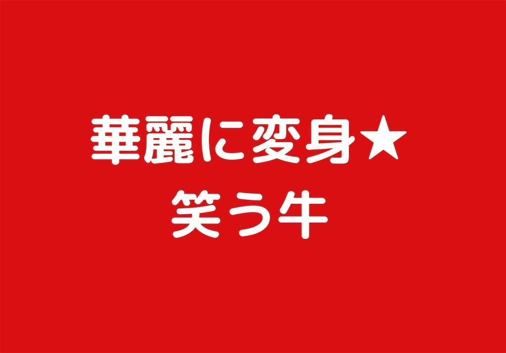 f:id:chu_ron:20190407184932j:image