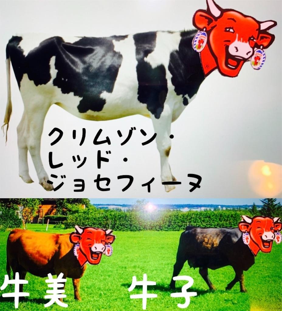 f:id:chu_ron:20190407200601j:image