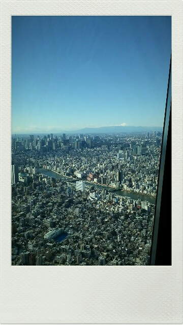 f:id:chubi-yumichi:20170104204452j:image